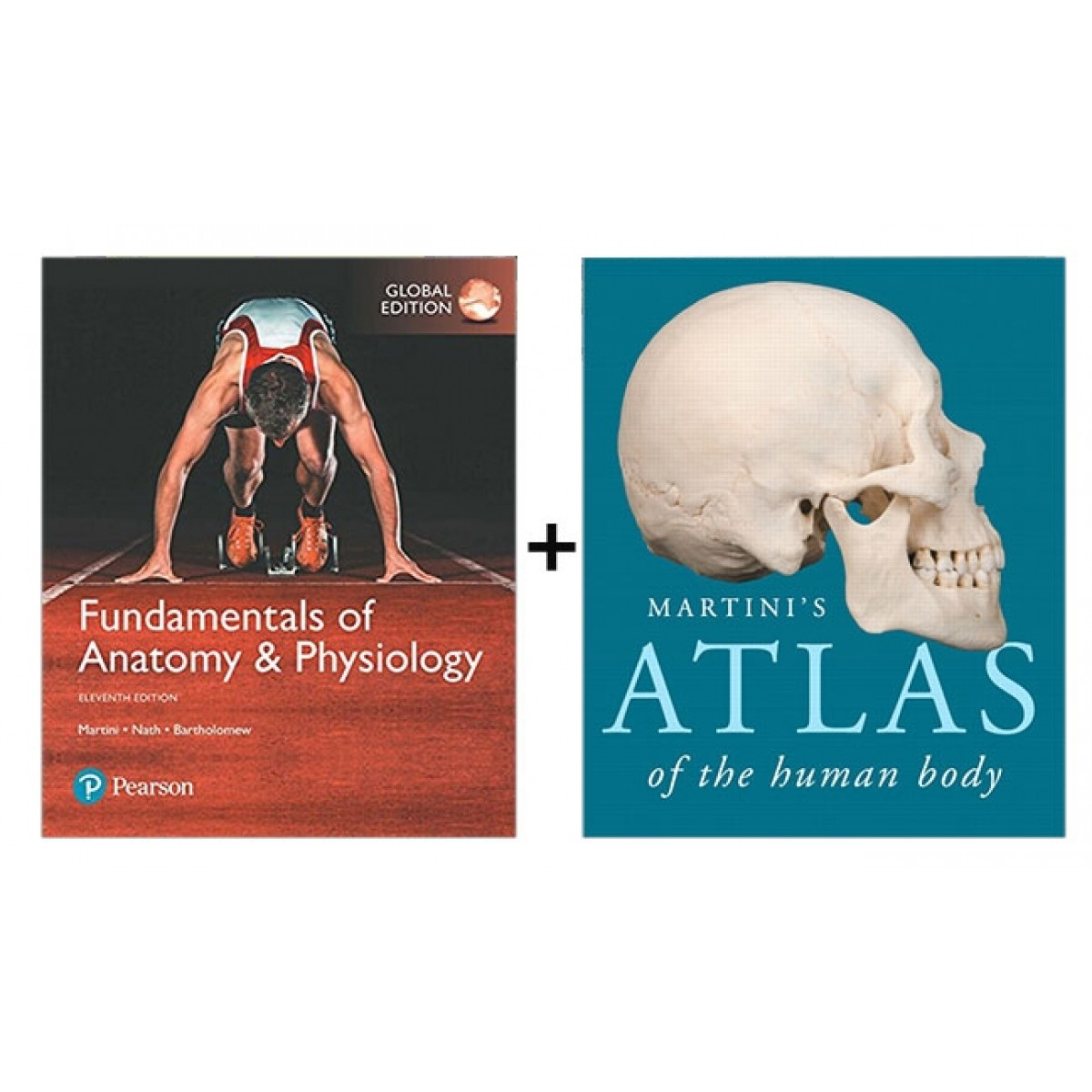 Fundamentals Of Anatomy Physiology Global Edition Modified